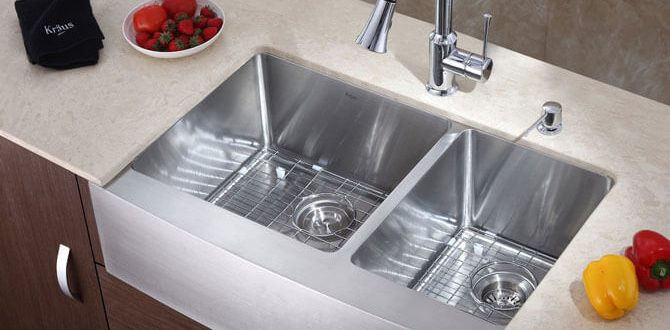 мойка металлическая для кухни